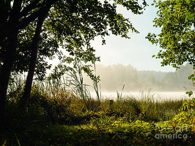 Photograph - Misty Morning Light by Ismo Raisanen