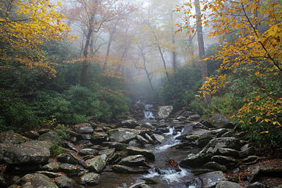 Photograph - Misty Morning Magic by Charles Warren