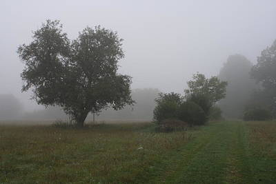 Photograph - Misty Morning by Mary-Lee Sanders