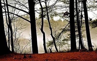 Photograph - Misty Morning  by Matthew Heller