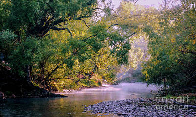 Photograph - Misty Morning On Nariel Creek by Lexa Harpell