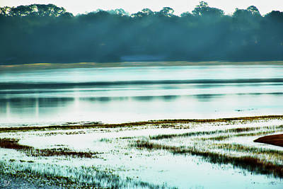 Photograph - Misty Morning On Spring Lake by Gina O'Brien