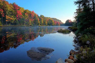 Photograph - Misty Morning On The Pond by David Patterson