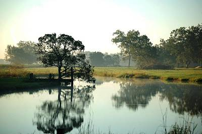 Misty Morning Pond Art Print