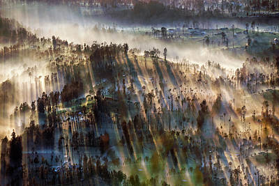 Photograph - Misty Morning by Pradeep Raja Prints