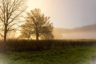 Photograph - Misty Morning by Rebecca Hiatt