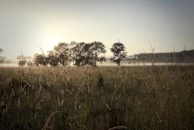 Photograph - Misty Morning by Sandra Ramacher