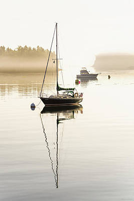 Photograph - Misty Morning Stillness by Marty Saccone