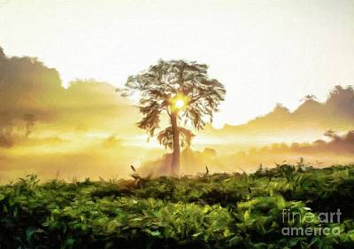 Rays Painting - Misty Morning Sunshine by Sarah Kirk