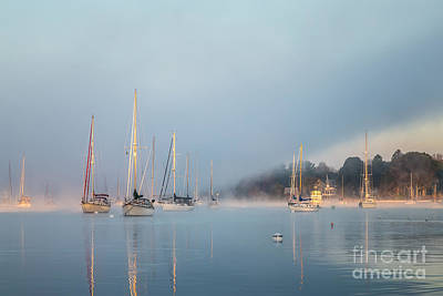 Photograph - Misty Morning by Susan Cole Kelly