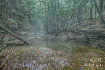 Digital Art - Misty Morning Woodscape Five by Randy Steele
