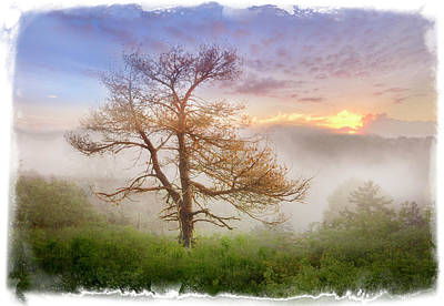 Misty Mountain Art Print by Debra and Dave Vanderlaan