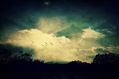 Photograph - Misty Mountain Flight by Brad Hodges