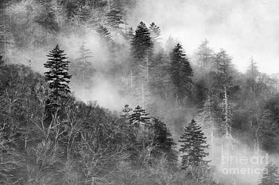 Photograph - Misty Mountains - D008248-bw by Daniel Dempster