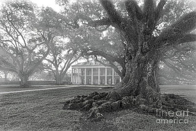 Landmarks Photograph - Misty Oak Alley Plantation Bw by Tod and Cynthia Grubbs