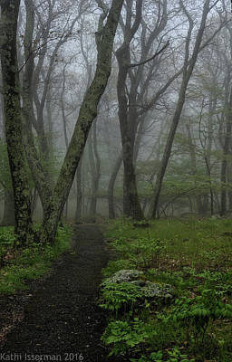 Photograph - Misty Path by Kathi Isserman