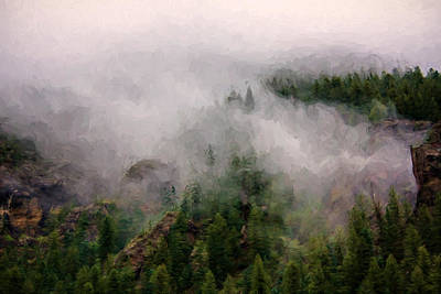 Photograph - Misty Pines by Lana Trussell