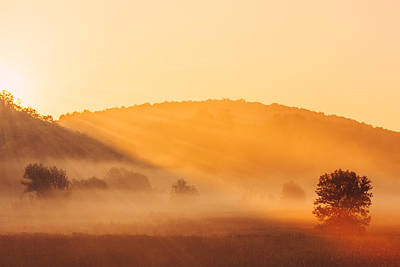Monticello Photograph - Misty Rays by Todd Klassy