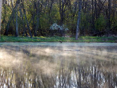 Photograph - Misty Reflective Dance by Wild Thing