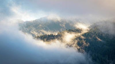 Photograph - Misty Ridge 2 by Michael Hope