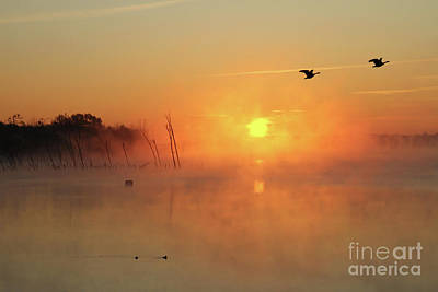 Photograph - Misty Rise Fly Bye by Roger Becker