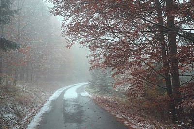 Photograph - Misty Road. Series In Mysterious Woods by Jenny Rainbow