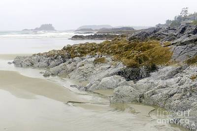 Photograph - Misty Shores by Frank Townsley