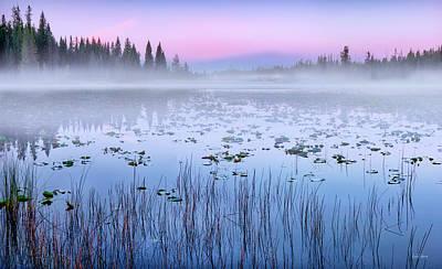 Photograph - Misty Silence by Leland D Howard