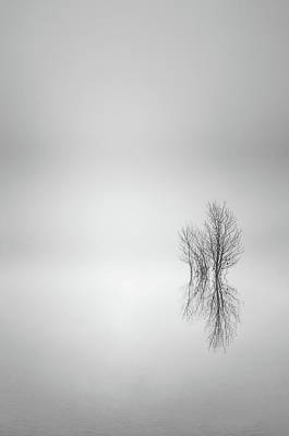 Photograph - Misty Simplicity by Don Schwartz