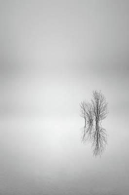 Photograph - Misty Simplicity by Don Schwartz