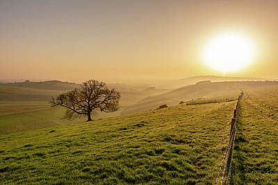 Photograph - Misty South Downs Way by Hazy Apple