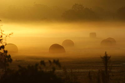 Photograph - Misty Sunrise by Theresa Cangelosi
