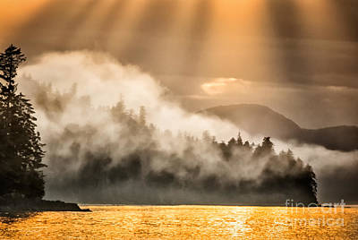 Photograph - Misty Sunset by Alice Cahill