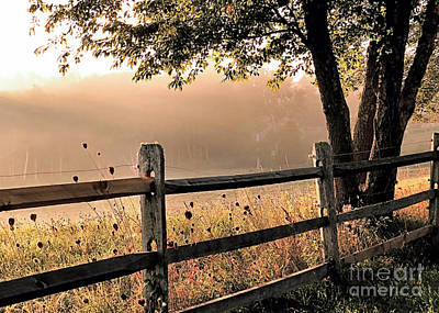 Photograph - Misty Sunshine by Janice Drew