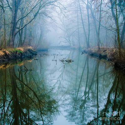 Misty Swamp Print by Caio Caldas