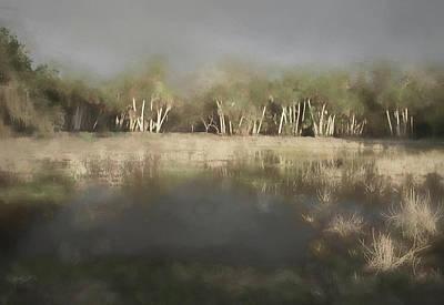 Photograph - Misty Swamp by Rosalie Scanlon
