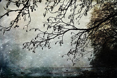 Photograph - Misty Tide by Randi Grace Nilsberg