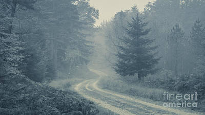 Misty Track New Forest Art Print by Richard Thomas