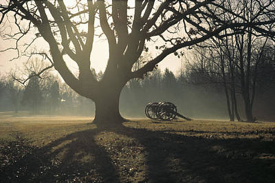 Natural Forces Photograph - Misty View Of Canon And Tree by Sam Abell