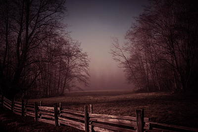 Photograph - Misty Walk by Monte Arnold