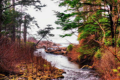 Photograph - Misty Watery Path To Sea by Dee Browning