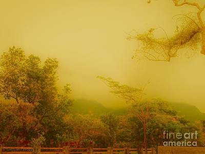 Misty Yellow Hue- El Valle De Anton Art Print