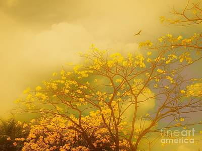 Misty Yellow Hue -poui Art Print