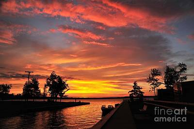 Mitchell State Park Cadillac Michigan Art Print by Terri Gostola