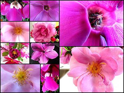 Photograph - Mix Of Flowers by Joyce Woodhouse