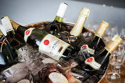Photograph - Mixed Bottles Of Gourmet Wine In Ice Chiller Bucket by Jacek Malipan
