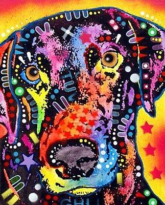 Weimaraner Painting - Mixed Breed  Weimaranish by Dean Russo