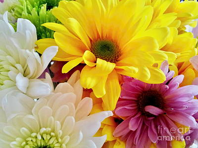 Photograph - Mixed Daisies Bouquet by Margaret Newcomb