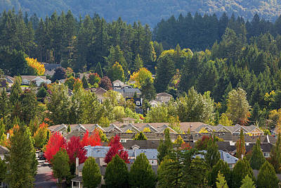 Photograph - Mixed Housing North American Suburban Neighborhood In Fall by David Gn