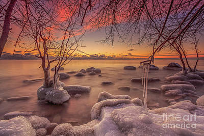 Photograph - Mke Freeze by Andrew Slater